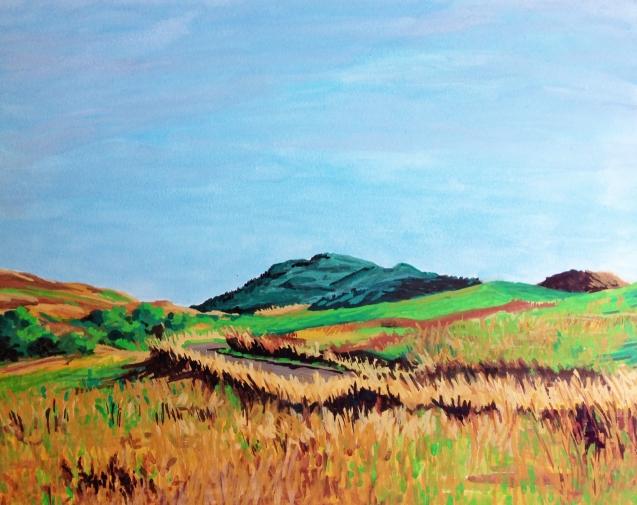 scotland landscape #1